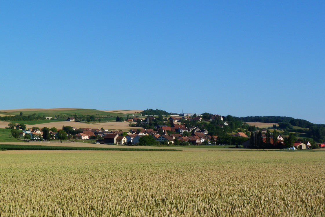 Village_de_Bavois
