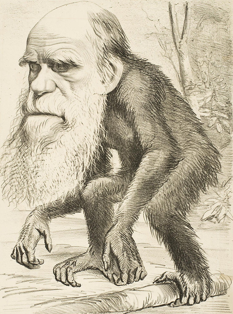 761px-editorial_cartoon_depicting_charles_darwin_as_an_ape_28187129